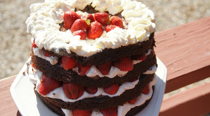 Sour Cream Chocolate Cake with Whipped Cream and Strawberries
