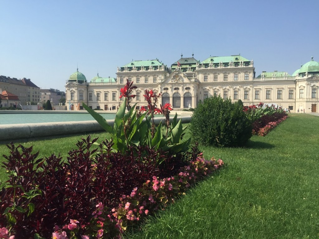 Canas at  gardens in Vienna
