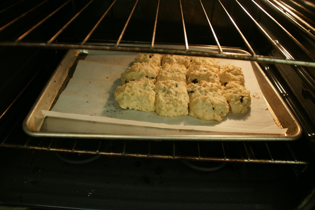 Bake the biscuits close together so the sides are tender and soft like the center of the biscuit.