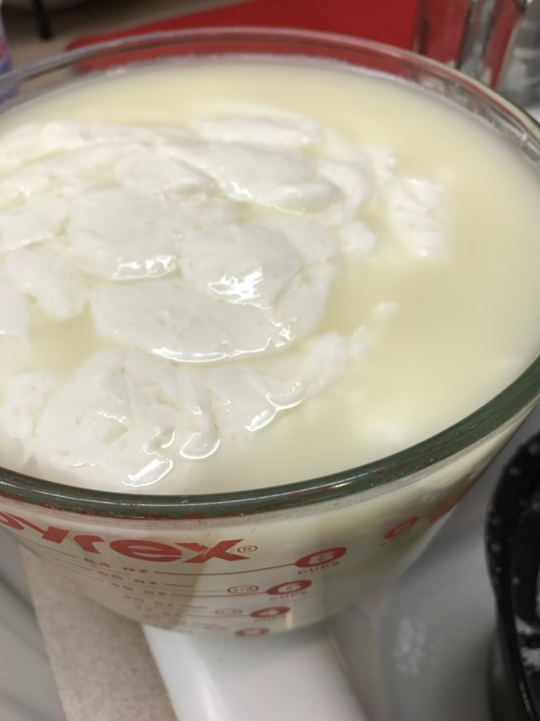 When the liquid is yellow and the white curds start forming, drain off the liquid whey. Save the high protein whey for making smoothies, bread or substitute for the liquid in other baked products.
